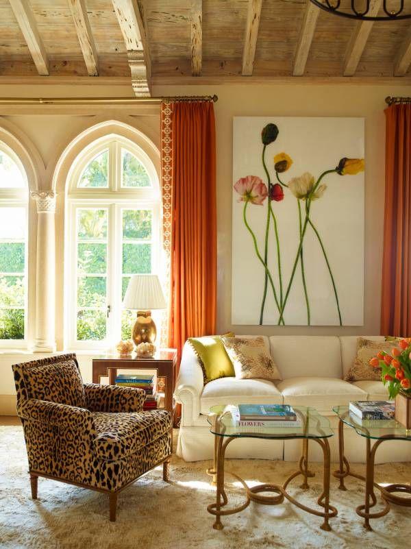 safari design orange