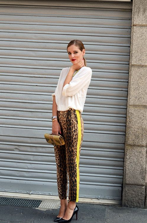 safari animal print pants