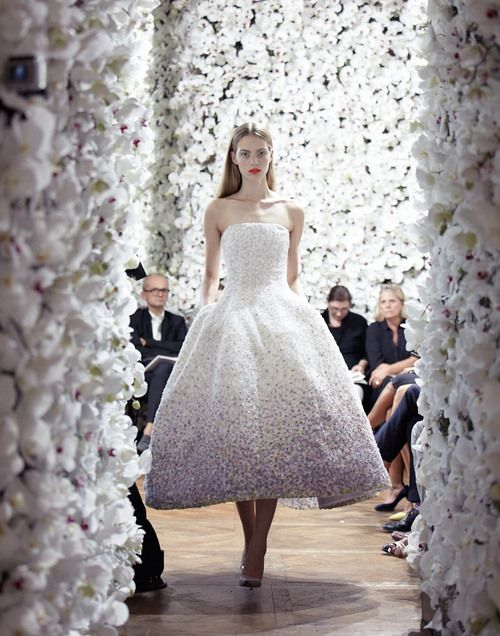 dior 2012 couture aw