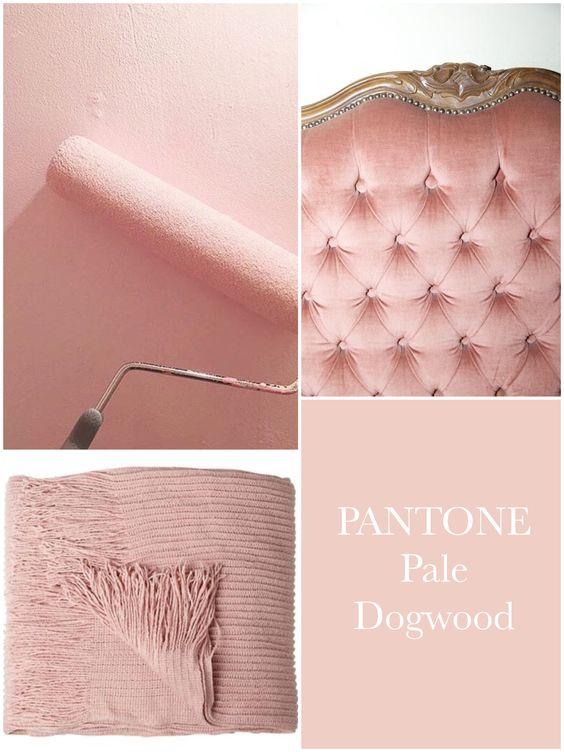 Roz pale dogwood