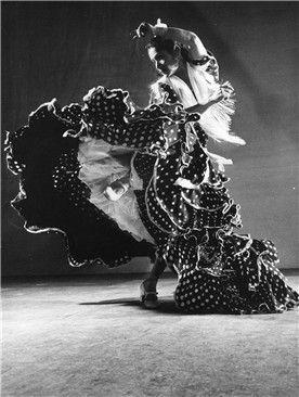 flamenco 8