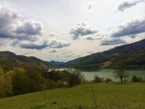 Valea Buzaului Drum spre Pastel Chalet